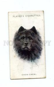 166937 CHOW-CHOW by WARDLE Player CIGARETTE card ADVERTISING