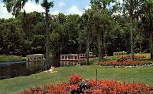 Glass Bottom Boats Silver Springs FL 1965