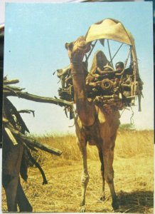 Sudan Nomad Family Travelling in the West - posted 1980