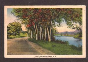 NH Greetings from KEENE NEW HAMPSHIRE Postcard PC