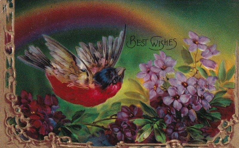 BEST WISHES, PU-1911; Colorful Sparrow flying over Forget-Me-Nots, Rainbow