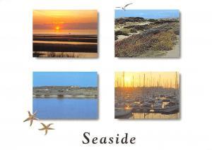 Belgium Seaside Port Bateaux Harbour Sunset Sea Landscape