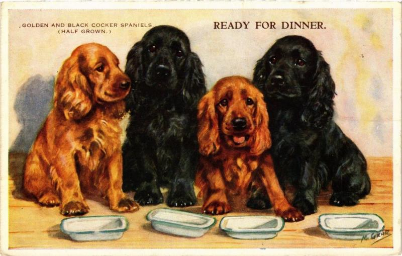 CPA Golden and Black Cocker Spaniels DOGS (727439)