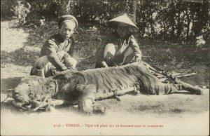 Tonkin Vietnam Native Men Dead Tiger Hunting c1910 Postcard