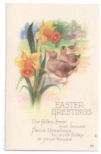 Easter Greetings Ducks Daffodils Vintage Postcard