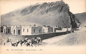 Algeria Biskra El-Kantara - Ecole Indigene, camels