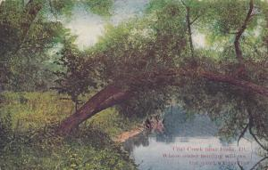 Coal Creek Near BUDA, Illinois, PU-1908