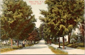 Milton Mills New Hampshire~School Street Homes~Houses Both Sides Road~1907 PC