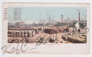 Rare Cotton on New Orleans LA Levee Detroit Photographic Vintage Postcard A11
