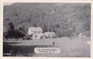 The Mountain Home Phoenicia New York Dexter Press