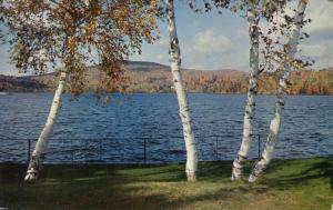 Lake Flower and White Birch Trees - Saranac Lake Adirondacks, New York - pm 1967