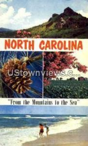 From the Mountains to the Sea Misc NC Unused