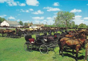 Canada Horses and Buggies At Mennonite Meeting House Kitchener Waterloo Ontario