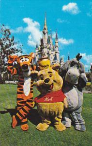 Disneyworld Winnie-The-Pooh Tigger and Eeyore At Fantasyland Orlando Florida