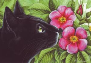 BLACK CAT & Rosehip by Irina Garmashova Author's CATS ART ~ Modern Postcard