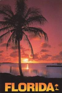 Florida Tropical Sunsets Are A Familiar Sight In Florida Like This one In The...