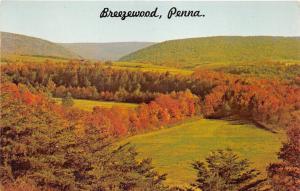 Hill 1975 Astor Plateau carr/é Effet Vieilli avec d/étails en Bois m/élang/é Verre Bois