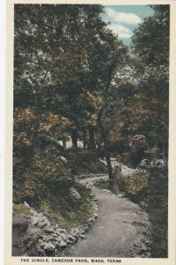 WACO , Texas, 1900-10s ; The Jungle , Cameron Park