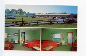 Middletown NY Chadwick Motel Old Cars Postcard