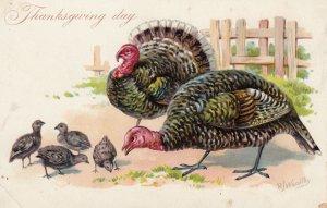THANKSGIVING ; Turkey , 00-10s ; TUCK No 123
