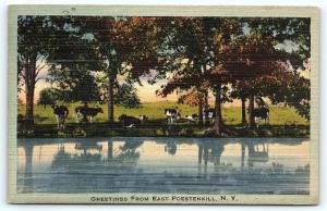 Postcard NY Greetings from East Poestenkill Vintage Linen R36