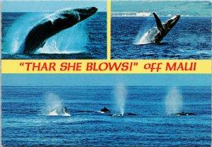 Humpback Whales Breaching Maui HI Hawaii 'Thar She Blows' Unused Postcard C1