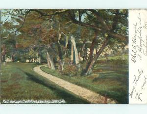 Undivided PATH THRU WILLOW TREES Cushings Island Maine ME v3631