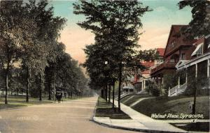 Syracuse New York~Walnut Place~Horse & Buggy in Street~Nice Homes~1908 Postcard