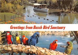 Busch Bird Sanctuary - California