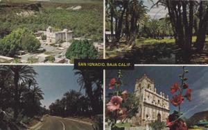 San Ignacia , Baja , California , Mexico , PU-1987