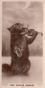 Hey Diddle Diddle Violin Musician Cat Old RPC Cigarette Card