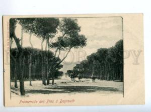 147219 LEBANON BEYROUTH Vintage undivided back postcard