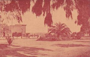 Anfa - vue sur la ville , Tunisie , 00-10s