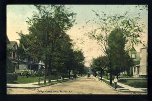 Mount Vernon, New York/NY Postcard, Cottage Avenue, Horse & Buggy, 1910!