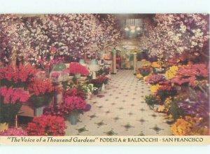 Linen FLORIST FLOWER SHOP San Francisco California CA AF6923
