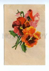 131106 PANSY by KOROTKOV vintage Color Russian PC