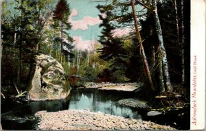 Adirondack Mountains Cold Brook New York Postcard Antique Forest Scene NY