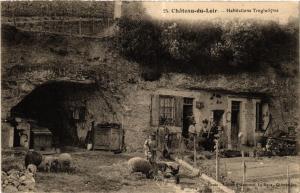 CPA CHATEAU-du-LOIR - Habitations Troglodytes (390967)