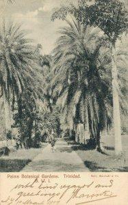 Trinidad B.W.I Palms Botanical Gardens 06.96