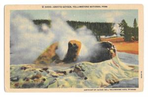 WY Yellowstone National Park Grotto Geyser Haynes Postcard