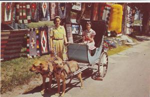 Dog cart , Quebec , Canada , 40-60s