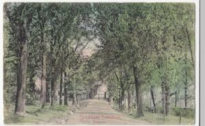 London; Streatham Common, Avenue PPC, 1904 PMK, To Miss Donegan, St John's Wood