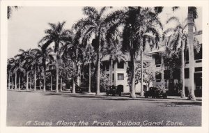 RP; BALBOA, Panama, 1900-1920´s; A Scene Along The Prado, Canal Zone