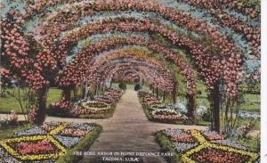 Washington Tacoma Rose Arbor In Point Defiance Park 1924 Curteich