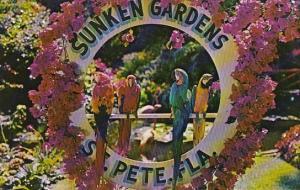 Florida St Petersburg Beautiful Sunken Gardens