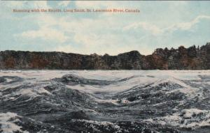Rapids , Long Sault , St Lawrence River , Ontario , Canada , 00-10s