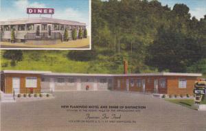 Pennsylvania West Nanticoke Flamingo Motel and Diner
