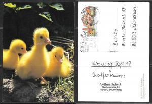 Germany, Easter chickens, 200th anniversary cancel.