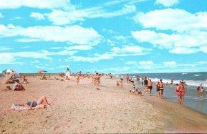 Virginia Chincoteague Assateague National Seashore