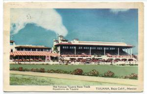 Tijuana Horse Race Track Baja California Mexico postcard